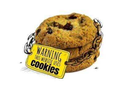 Pillola formativa n°4: GDPR, Cookie & form di richiesta - GDPR - Nexsys
