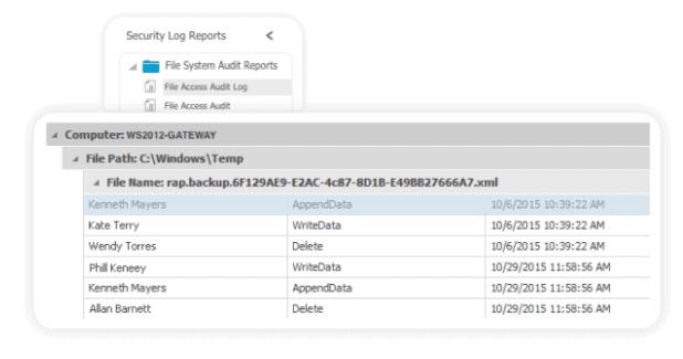 Auditing File Server