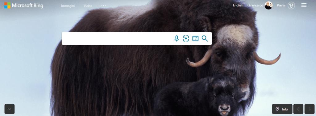 Bing background Teams